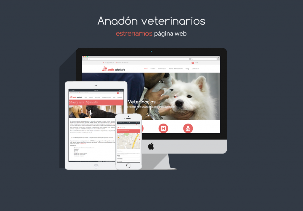 nueva_web